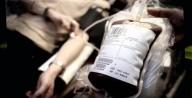 Empresa oferece transfusões de sangue de adolescentes para quem quer lutar contra o envelhecimento
