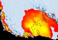 Está chovendo na Antártica e cientistas estão preocupados