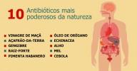 0s 10 antibióticos naturais mais poderosos conhecidos pela humanidade