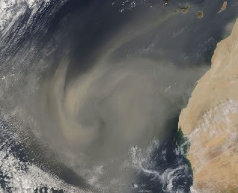 Tempestade de areia sai do Saara (Marrocos) na direção de América.