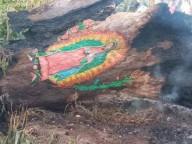 Fogo em árvore não queima a imagem pintada de Nossa Senhora de Guadalupe