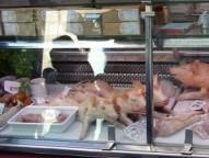 Corpos de leitões no açougue.