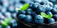 Mirtilo - 1001 propriedades e benefícios para sua saúde