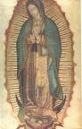 12 de dezembro – Festa de Nossa Senhora de Guadalupe (Vídeo com Homilia do Pe.Paulo Ricardo)
