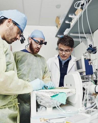 Stefano Daniele, Zvonimir Vrselja e Nenad Sestan com a máquina BrainEx no laboratório de Yale. Crédito: Thomas Prior / The New York Times.