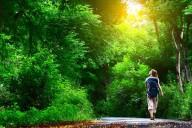 Caminhar pode nos tornar mais criativos e felizes