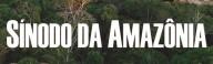 Você sabe o que estão propondo para o Sínodo da Amazônia? (Vídeo)