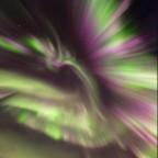Como uma Fênix de fogo:  o incrível show de auroras sobre Senja, na Noruega