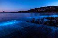 Águas fluorescentes – um fenômeno cada vez mais comum
