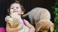 Cachorroterapia - Ter um cão por perto deixa as crianças mais resistentes contra alergias e também reduz o risco de ficarem obesas
