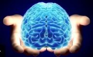 Transferência da mente humana para o computador