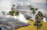 Incêndio em Parque Nacional da Chapada dos Veadeiros: Profecia de Nossa Senhora do ano 2010