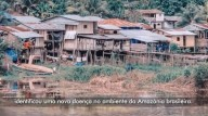 '...HAVERÁ PESTES...' (Mt 24,7)    Cientista brasileiro identifica nova doença na Amazônia