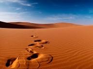 Atravessai o Deserto! (09-05-2004)