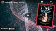 Coleta de DNA em massa