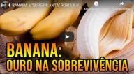Banana, a