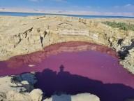 Piscina de água perto do Mar Morto fica vermelha como sangue