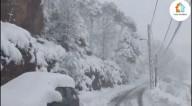 Fortes nevascas atingem Síria, Líbano, Israel, Palestina, Jordânia, Arábia Saudita e Egito (vídeos)