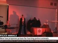 """""""Salve, Satã"""" - Uma emissora australiana fez acidentalmente uma filmagem de um ritual satânico durante uma reportagem de notícias sobre o bem-estar dos cães da polícia"""